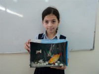 عالم الأسماك